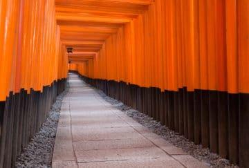 Viaje para novios a Japón y Polinesia - Kyoto - Fushimi Inari