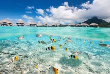 Viaje para novios a Japón y Polinesia - Bora Bora