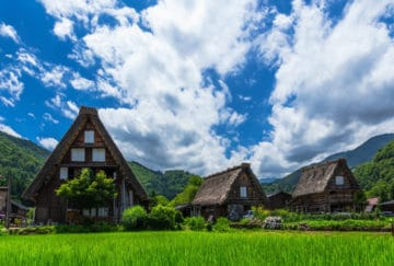 Viaje de novios a Japon - Shirakawago