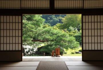 Viaje de novios a Japon - Miyajima