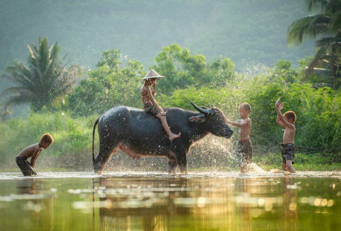 organiza tu viaje de novios a vietnam y camboya
