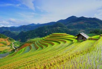 Viaje de novios a Vietnam. Mosaico de culturas