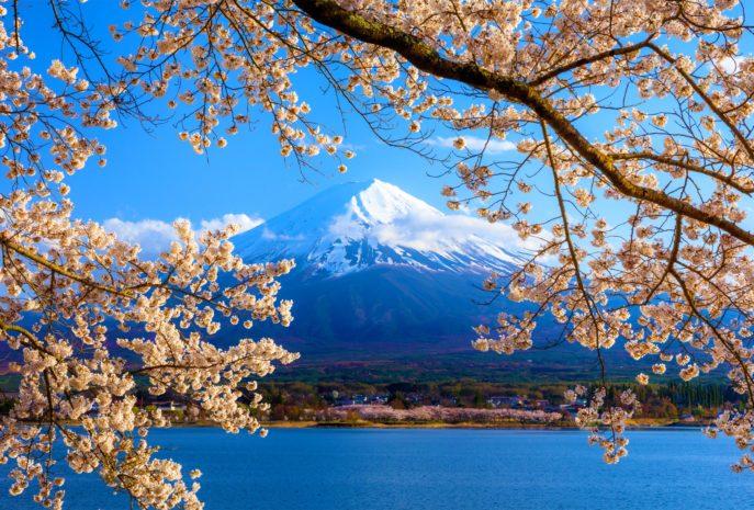 Viajes de Novios a Japón