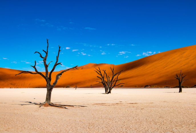 Viajes de Novios a Namibia